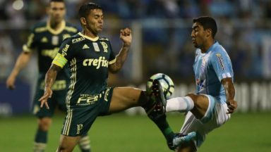 Palmeiras vs Avai